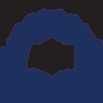 American Friends of DVI - Logo